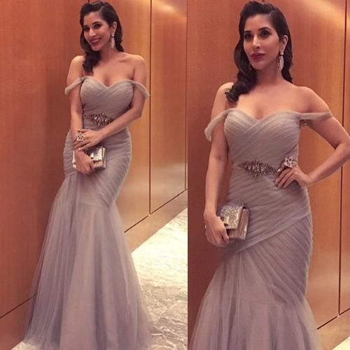 Sophie Choudry at Filmfare Awards 2017 Red Carpet!
