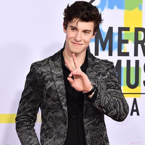Shawn Mendes at American Music Awards 2017